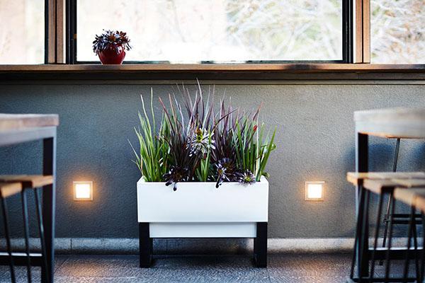 GlowPear-self-watering-planter-4