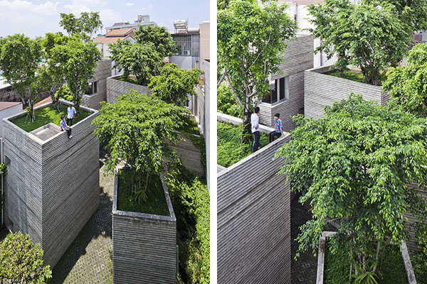 house-for-trees-1