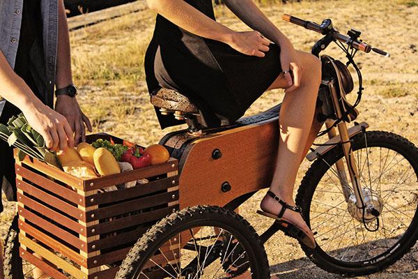 raiooo-three-wheeler-wooden-bike-3