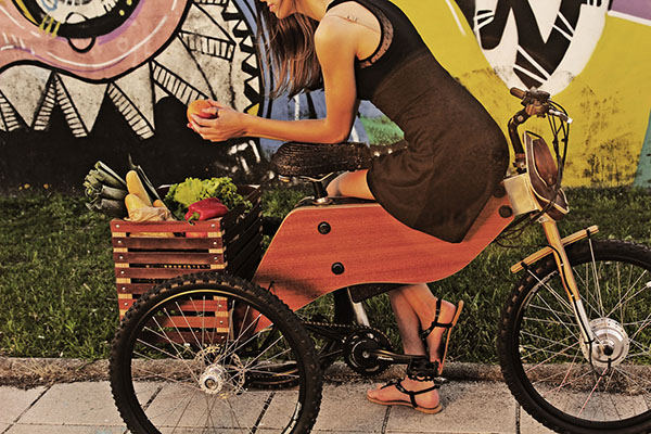 raiooo-three-wheeler-wooden-bike-4
