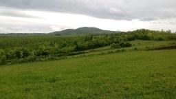 Данило Илић: Ове ливаде су саставни део