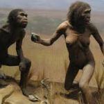 Foredrag om menneskets oprindelse