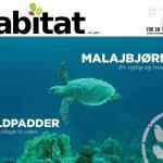 Habitat #15