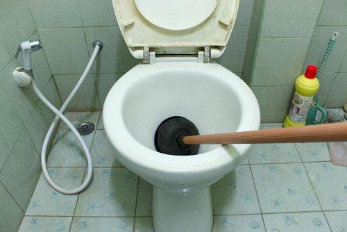 Jasa Pembuatan Website dan SEO Sedot WC
