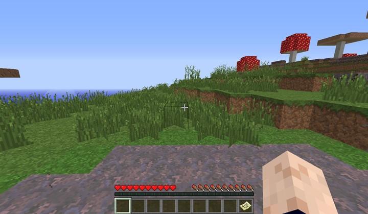 Minecraft 256 Block Challenge