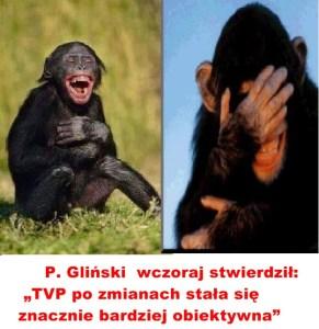 Kaczyński - małpy 2