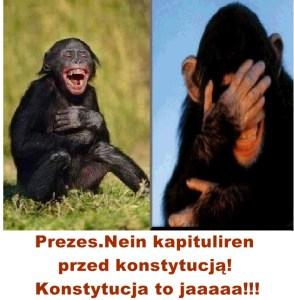 Kopia (10) Kaczyński - małpy