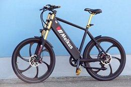 XT-Racing E-Bike Mountainbike