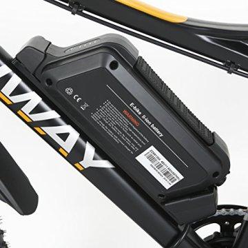 e-bike fatbike