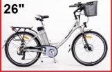 Powerpac E-Bike