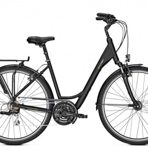 Raleigh Chester 28 Inch 45 cm Dames 21V V-Brake Matzwart