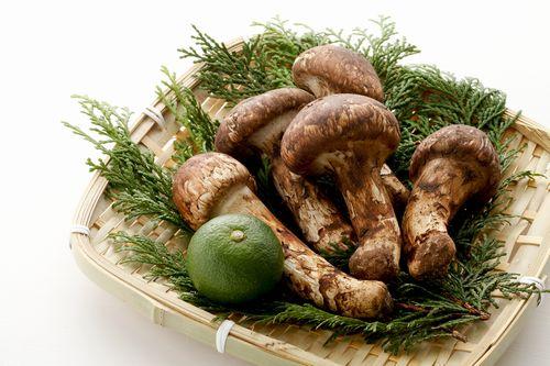 秋の松茸フェア - 大地の贈り物
