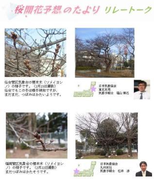 桜開花予想のたより リレートーク