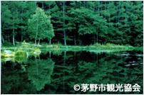 【長野県】御射鹿池(みしゃかいけ)