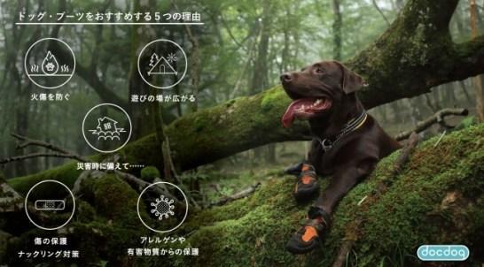 犬靴専門 EC サイト - docdog