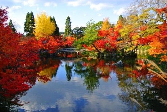紅葉名所ランキング - 1位:京都の『禅林寺 永観堂』