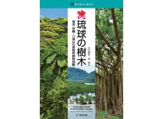 ネイチャーガイド 琉球の樹木:奄美・沖縄〜八重山の亜熱帯植物図鑑 - 文一総合出版