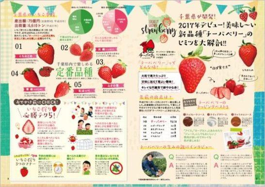 ご当地パンフレット『千葉県じゃらん』1月12日(木)より配布開始