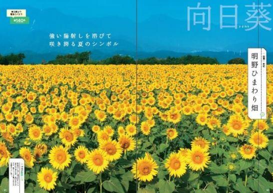 『花の絶景さんぽ旅』(BOOKぴあ)