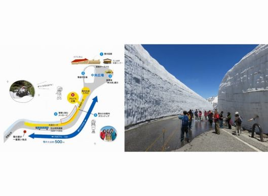 立山黒部アルペンルートの雪
