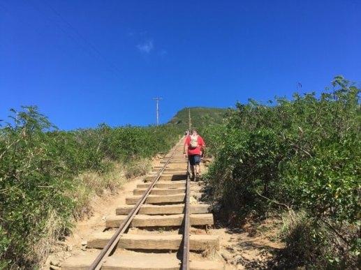 ココヘッド クレーター トレイルの線路跡