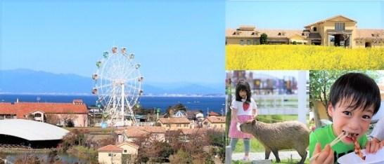 横須賀市長井海の手公園ソレイユの丘