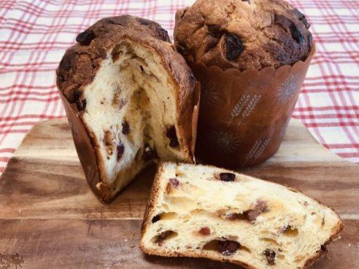 「パンのフェス」シニフィアン・シニフィエ 「限定パネトーネ」