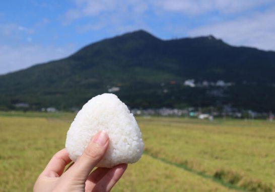 THE Mount Tsukuba Tours
