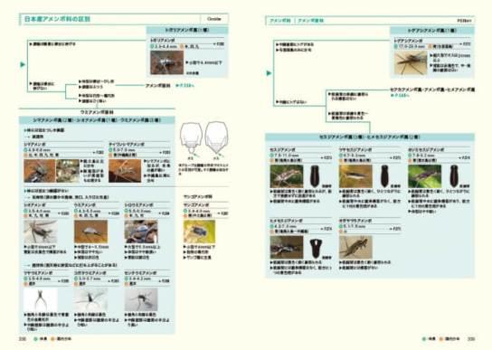 ネイチャーガイド 日本の水生昆虫 - 文一総合出版
