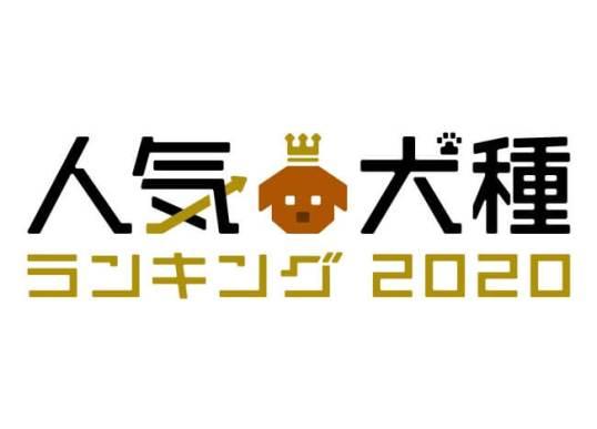 人気犬種ランキング2020 - アニコム損害保険株式会社