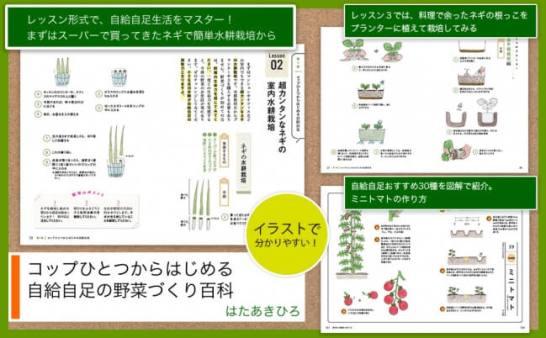 """""""コップひとつ""""で始められる野菜づくりの本"""