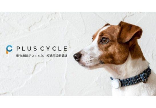 プラスサイクル(Plus Cycle)
