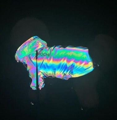 【ペット用レインコートの新形態】犬を夜道の危険から守る「反射材使用のレインボージャケット」