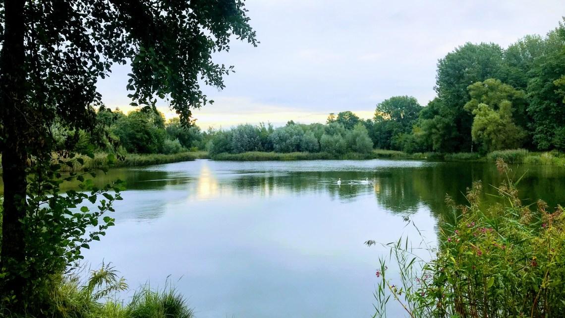 Park Śląski