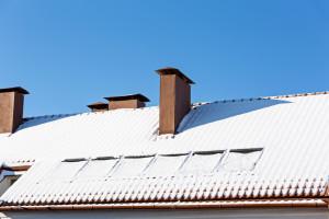 Roof under snow