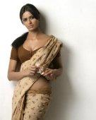 saree-indian