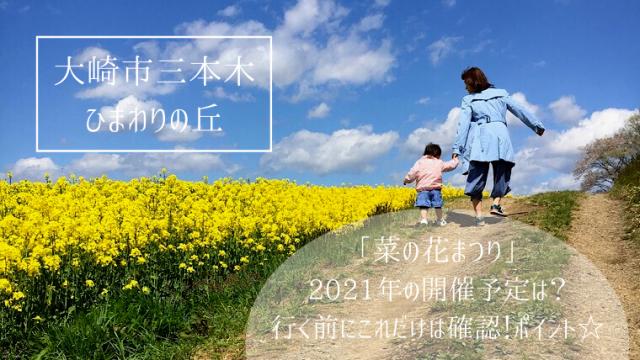 宮城県菜の花有名観光スポットひまわりの丘☆菜の花豆知識も紹介!