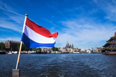working after MBA in the Netherlands