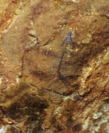 La capacidad artística del hombre prehispánico quedo de manifiesto en las pinturas rupestres