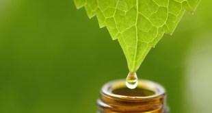 Qué es la homeopatía y cómo funciona