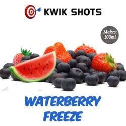 Kwik Shots - Waterberry-Freeze - One shot Flavour Concentrates   South Africa