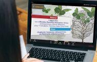 Η διαχείριση ανθρώπων με Άνοια στο επίκεντρο Webinar του Δήμου Ιλίου