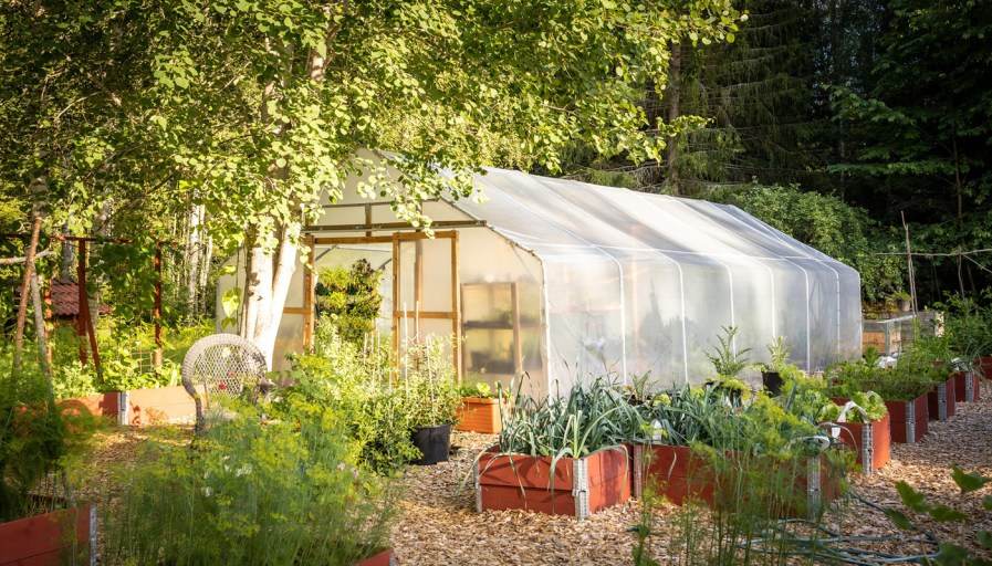 exterior shot of a tented greenhouse with planters around it
