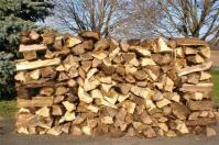 Χωρίς ξύλα οι κάτοικοι στο Ανατολικό Πήλιο – Καταγγελίες για λάθη και παραλείψεις της δημοτικής αρχής