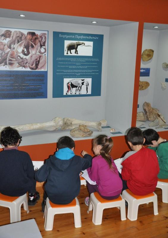 fossiled elephants