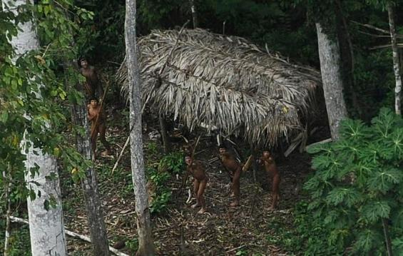 Uncontacted Indians react to a plane flying over their community in the Amazon basin