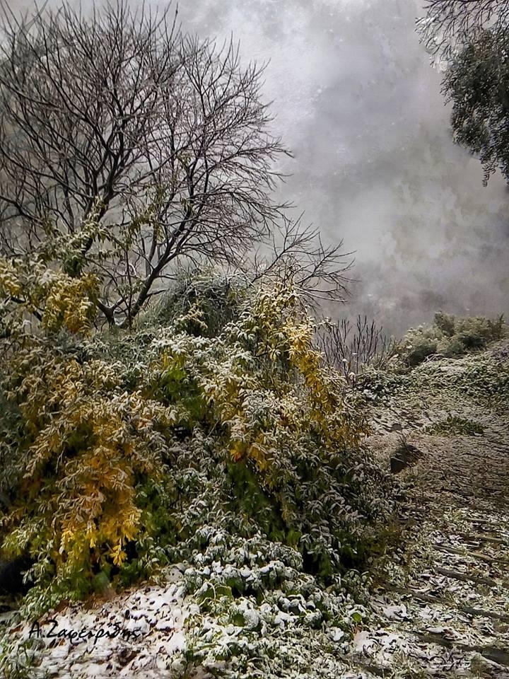 """Ο χιονιάς """"χτύπησε""""- Σήμερα το βράδυ το θερμόμετρο θα δείξει στο Βελεστίνο -10 βαθμούς-Ανοίγει το Χιονοδρομικό"""