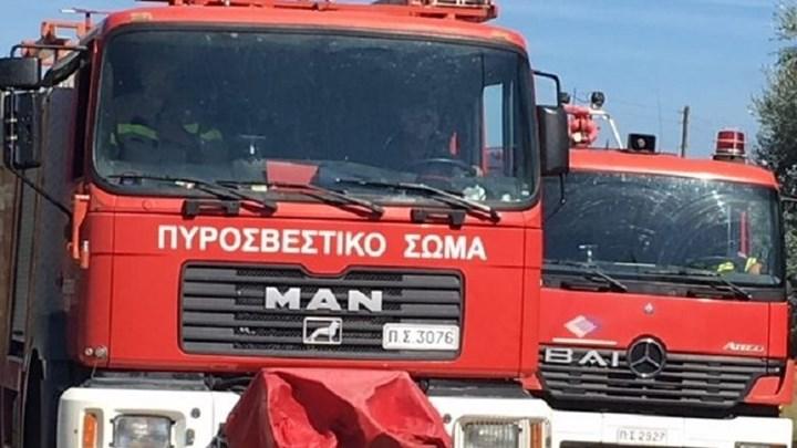 Κινητοποίηση της Πυροσβεστικής για φωτιά στη Νεράιδα Αλμυρού