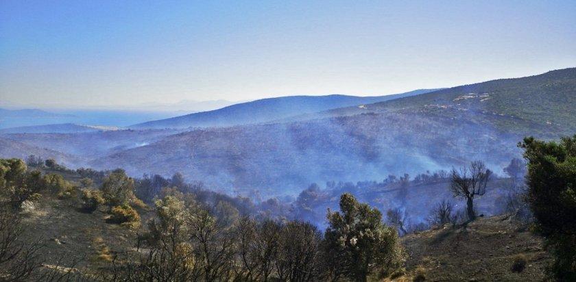 Υπό έλεγχο η πυρκαγιά στην Κάρυστο – «Δεν εμπνέει ανησυχία»