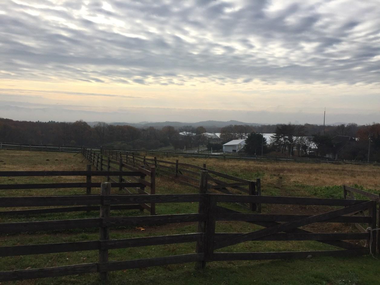フロラシオン那須 牧場からの眺め